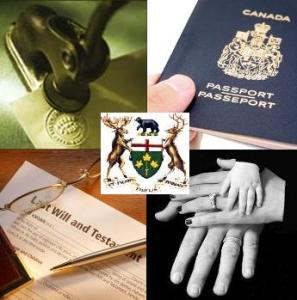 how to start an immigration law practice